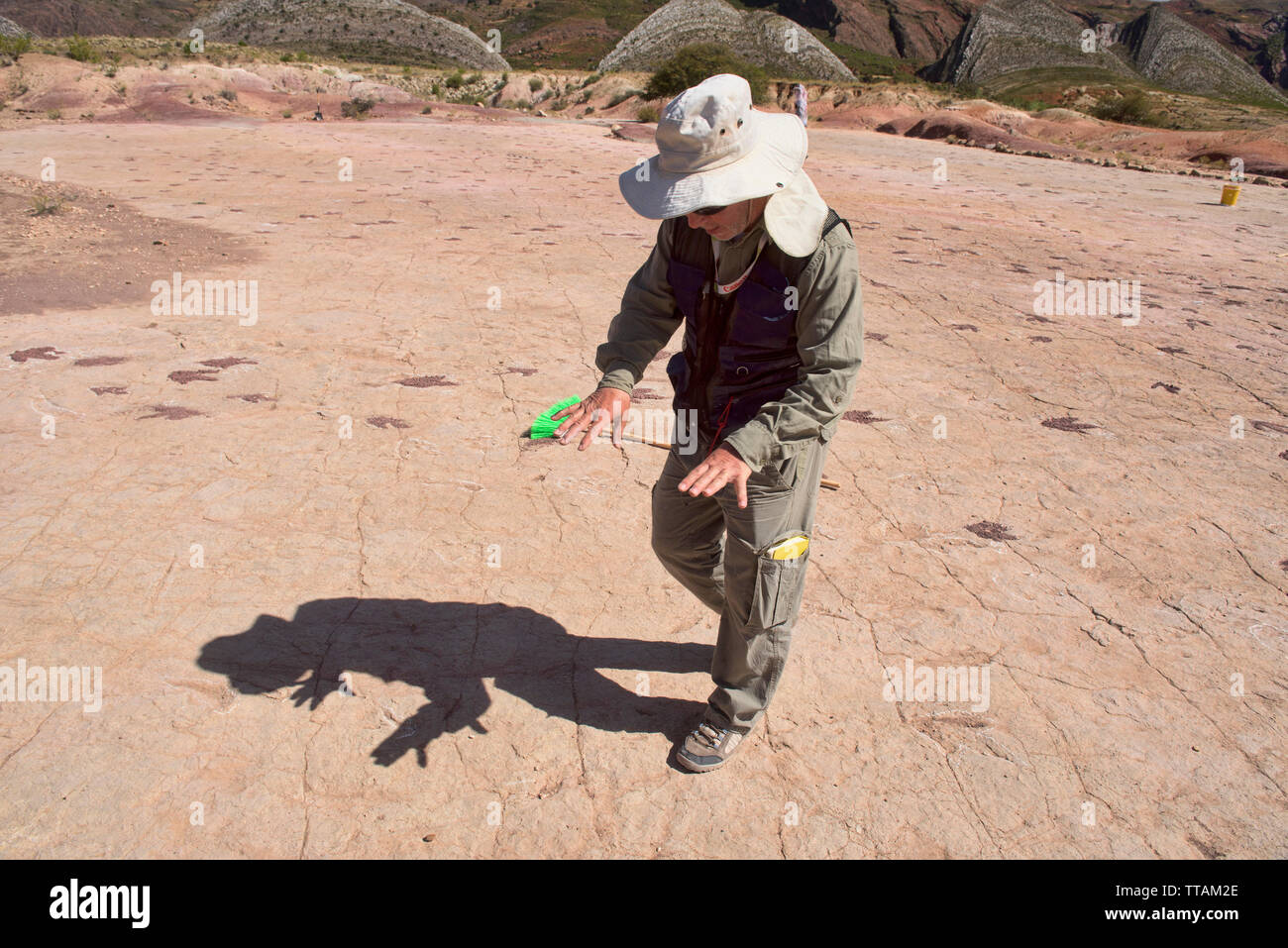 Paleontologist studying dinosaur footprints in Torotoro National Park, Torotoro, Bolivia Stock Photo