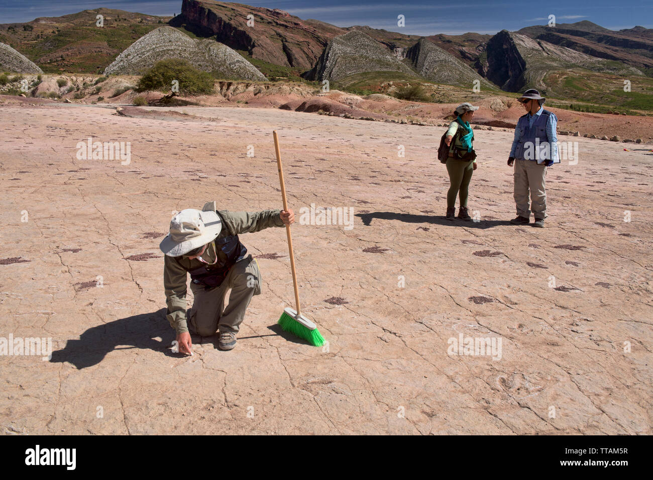Paleontologist studying dinosaur footprints in Torotoro National Park, Torotoro, Bolivia Stock Photo