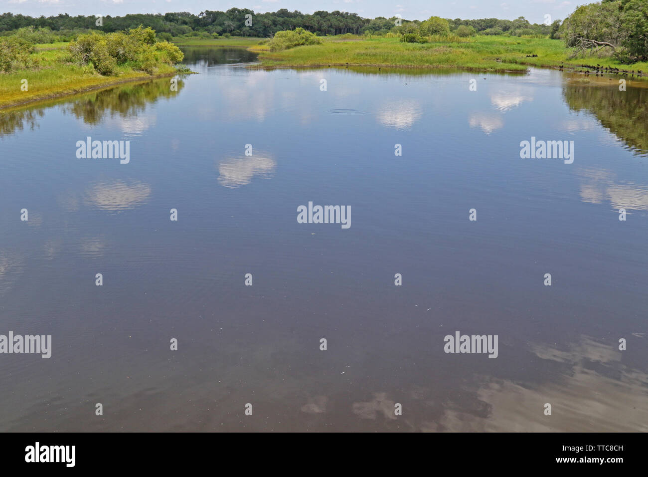 Water reflections of clouds at Myakka River State Park Florida. - Stock Image