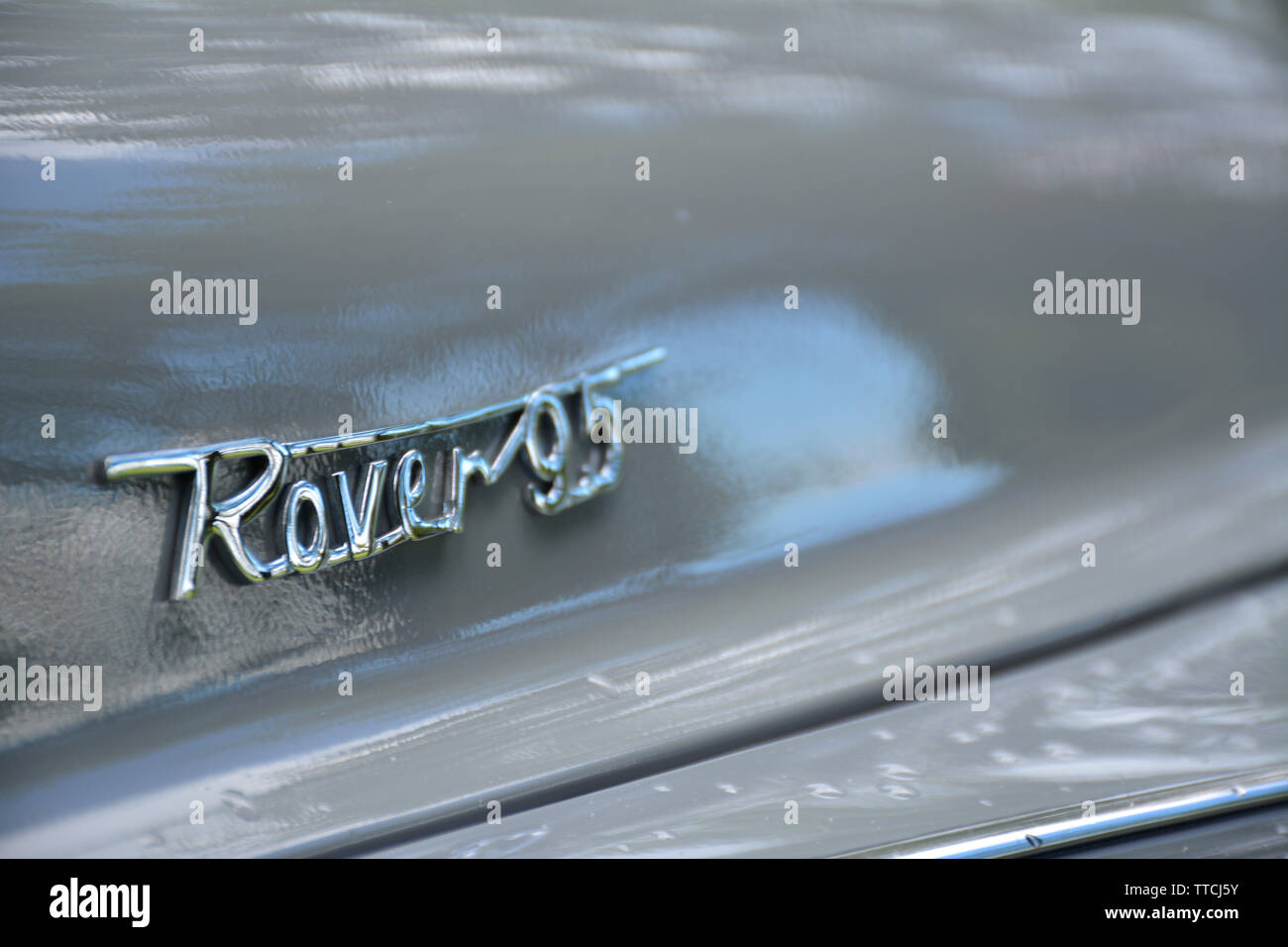 Close up of a Rover 95 Classic Car showing the Chrome Badge - Stock Image