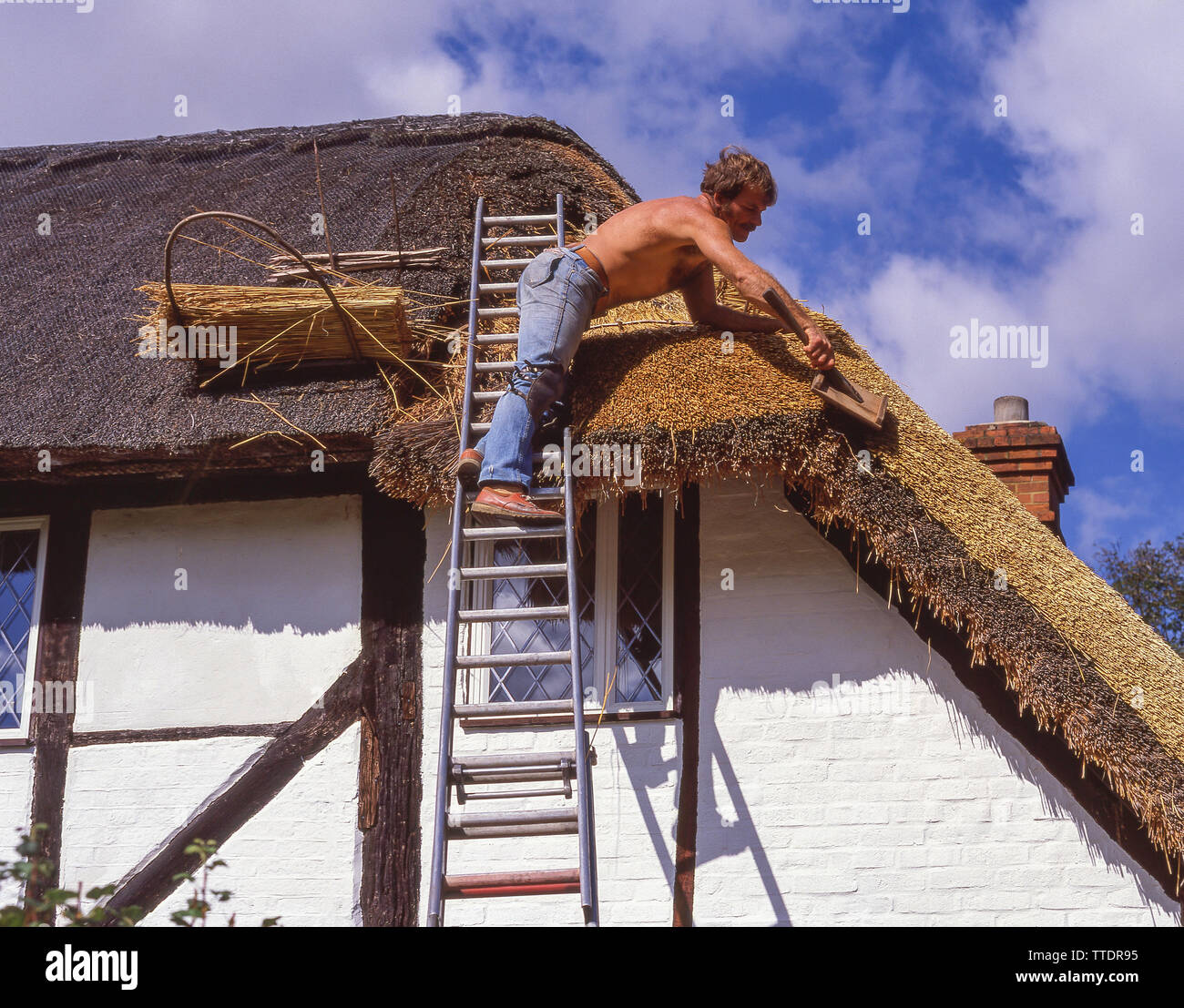 Thatch worker repairing thatched roof on period cottage, Hartley Wintney, Hampshire, England, United Kingdom - Stock Image