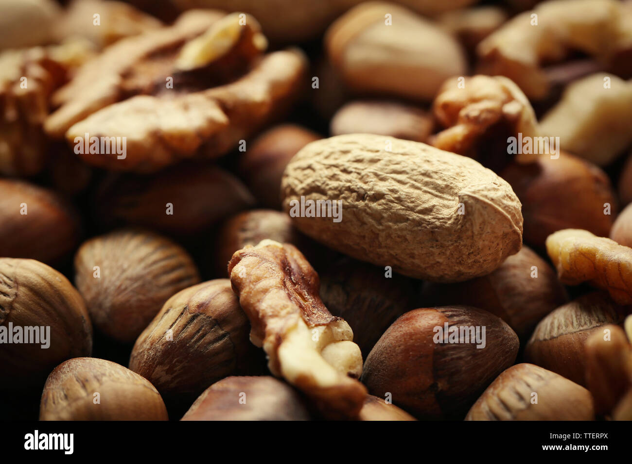 Background of hazelnuts, walnuts, almonds, acorns and peanuts Stock Photo