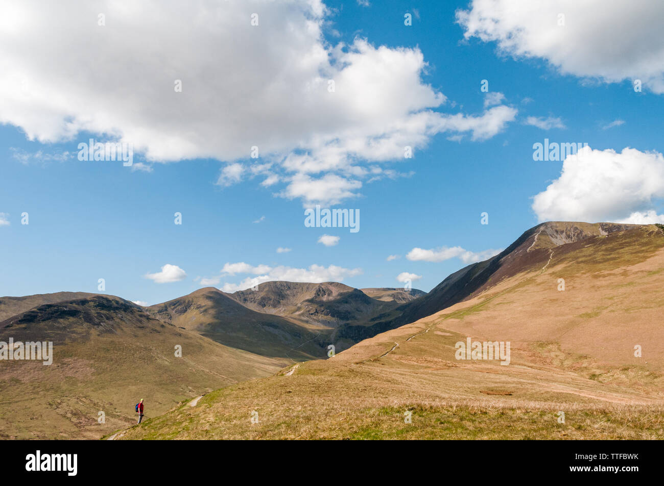 A hillwalker in the Lake District enjoys the view of the Coledale Fells including Grisedale Pike, Outerside, Sail and the summit of Grasmoor in the di - Stock Image