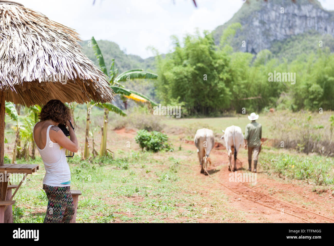 Western girl taking photo in the countryside, Vi̱ales Cuba - Stock Image