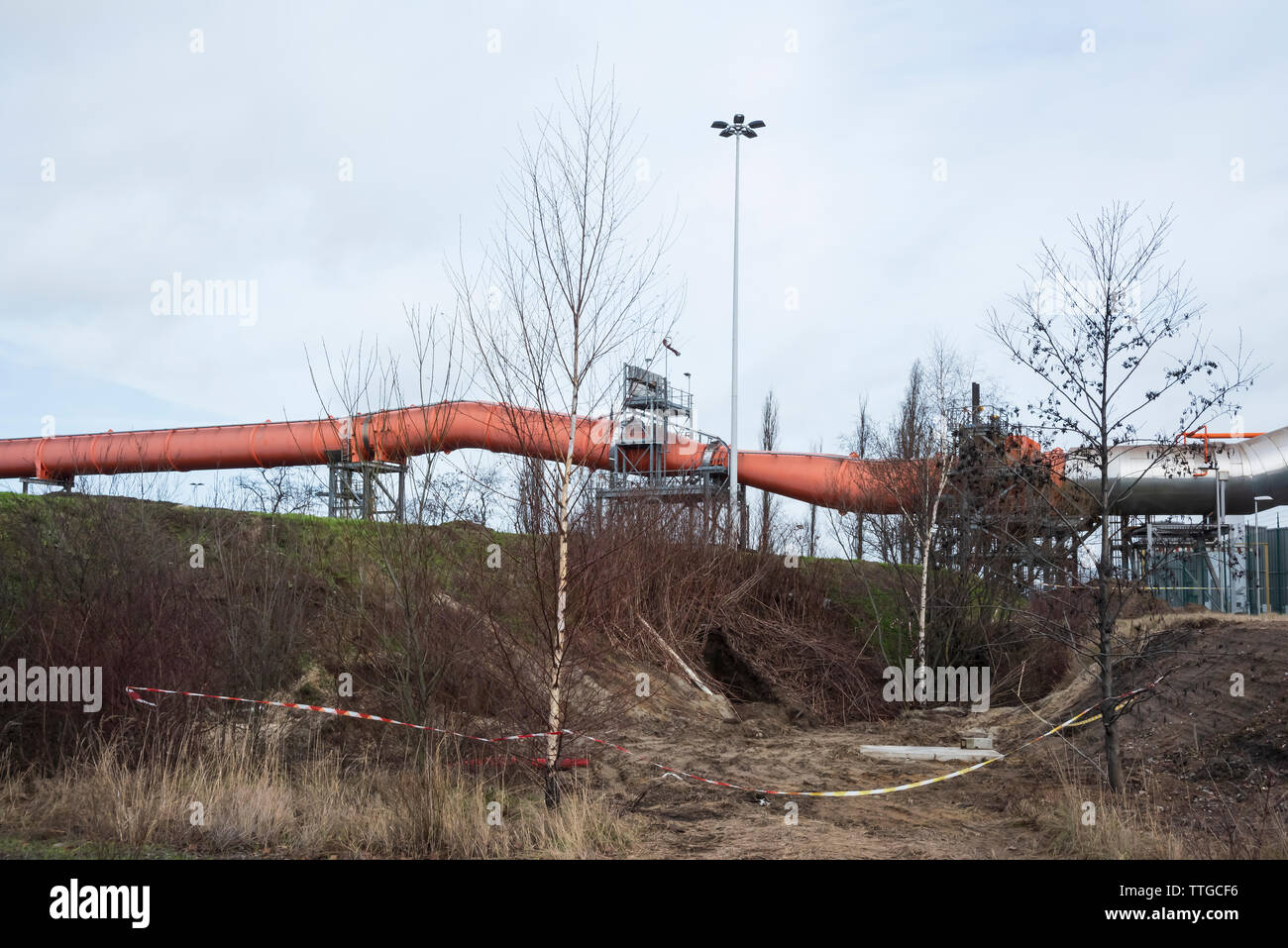 Pipeline and trees in an industrial landscape - Stock Image