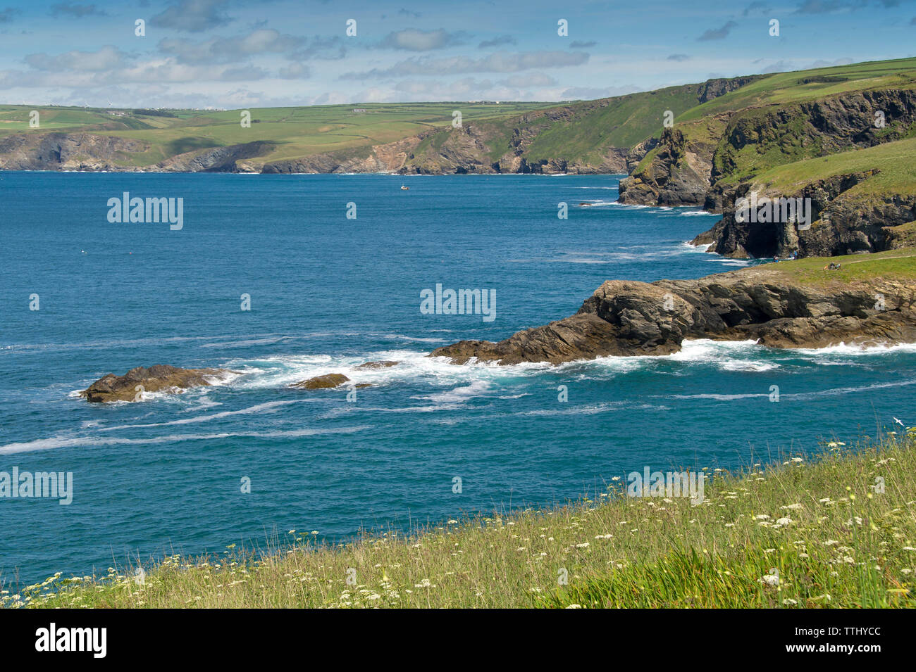 Port Isaac, Cornwall, UK, coastal scenery. - Stock Image