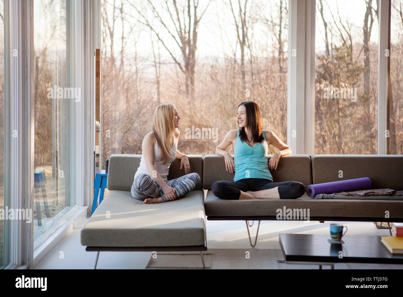 Homosexual females spending leisure time in living room - Stock Image