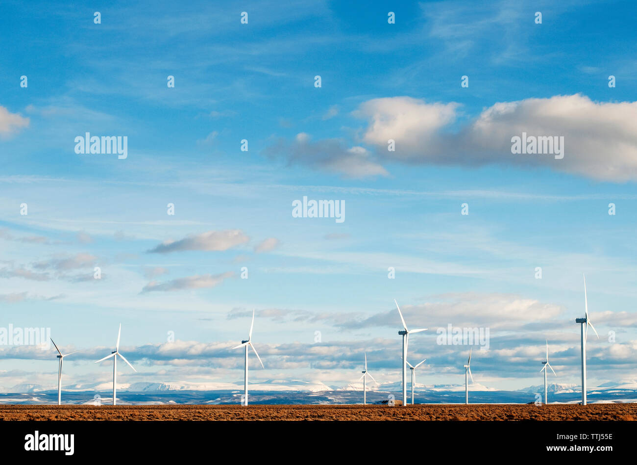 Wind turbines against blue sky on sunny day Stock Photo