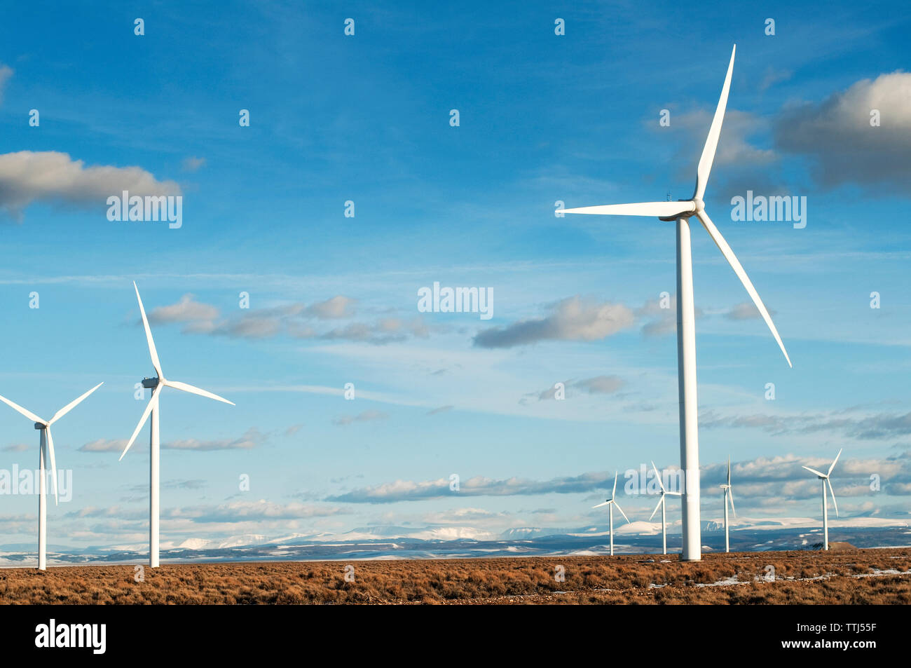 Wind turbines on field against sky on sunny day Stock Photo