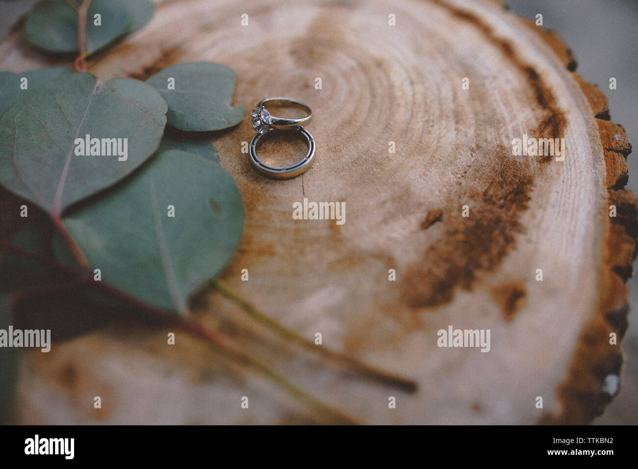 High angle view of wedding rings with leaves on tree stump Stock Photo