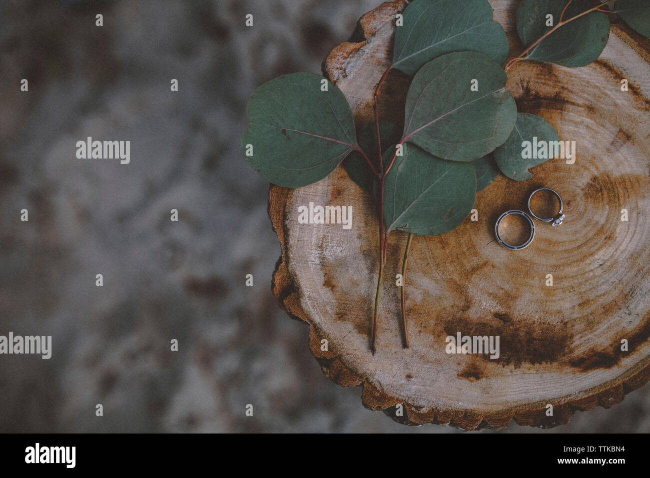 Overhead view of wedding rings with leaves on tree stump Stock Photo