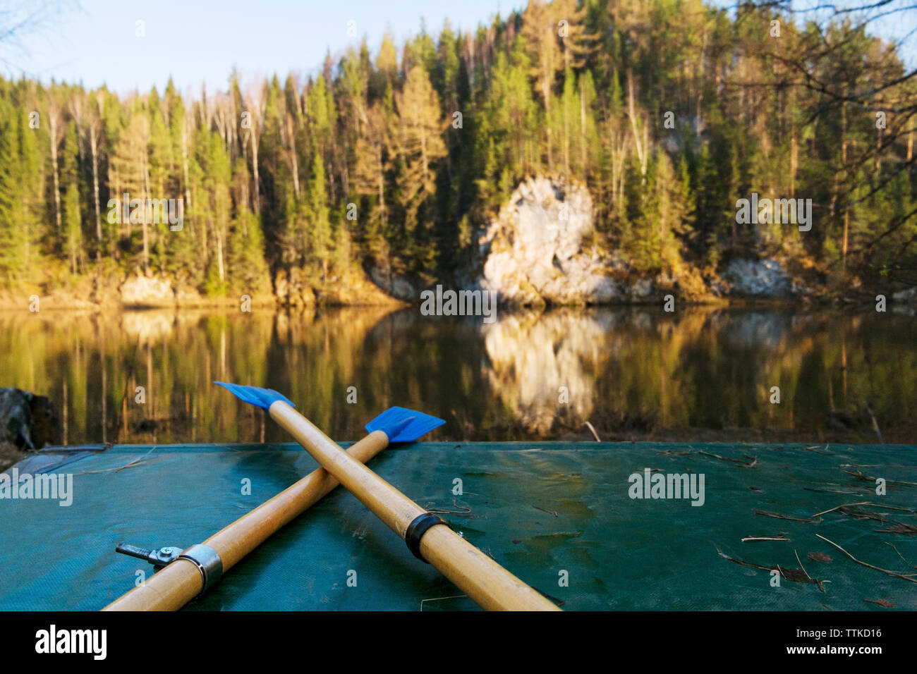 Oars on boat at riverbank with trees in background - Stock Image
