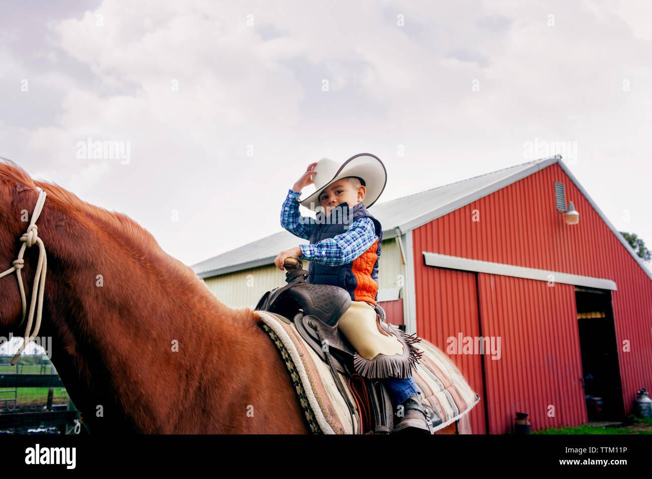 Cute cowboy riding horse against clear sky Stock Photo