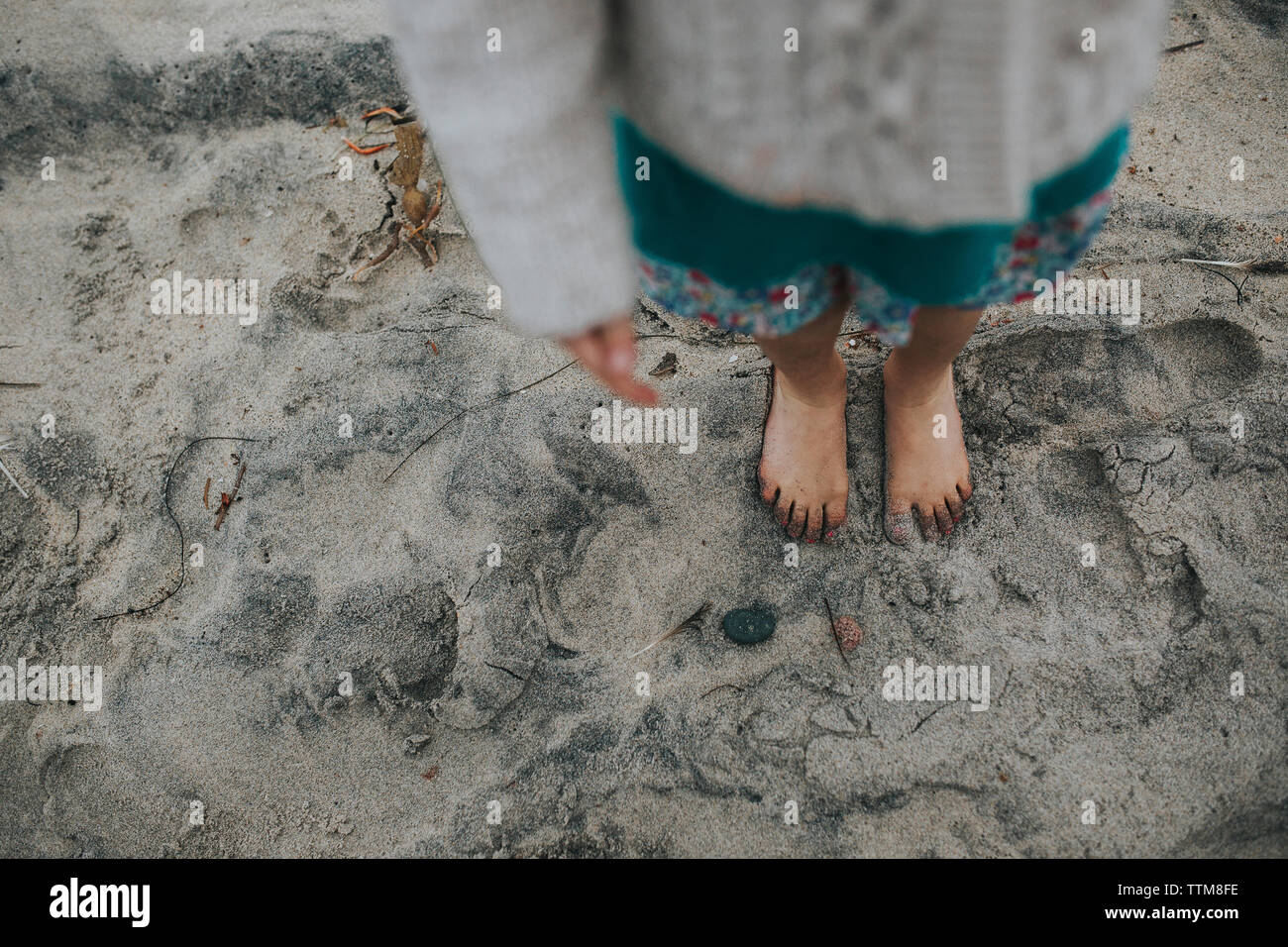 Low section of girl standing on wet sand at beach - Stock Image