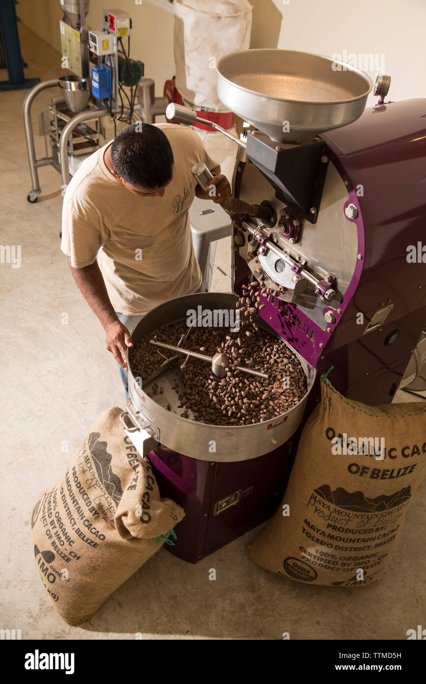 BELIZE, Punta Gorda, Toledo, guests can participate in a Bean to Cup Workshop where they'll tour the coffee plant, and be shown the process of taking - Stock Image