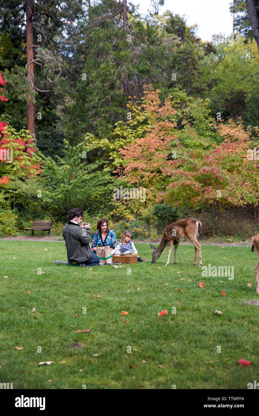 USA, Oregon, Ashland, families enjoy a picnic and wildlife at Lithia Park - Stock Image