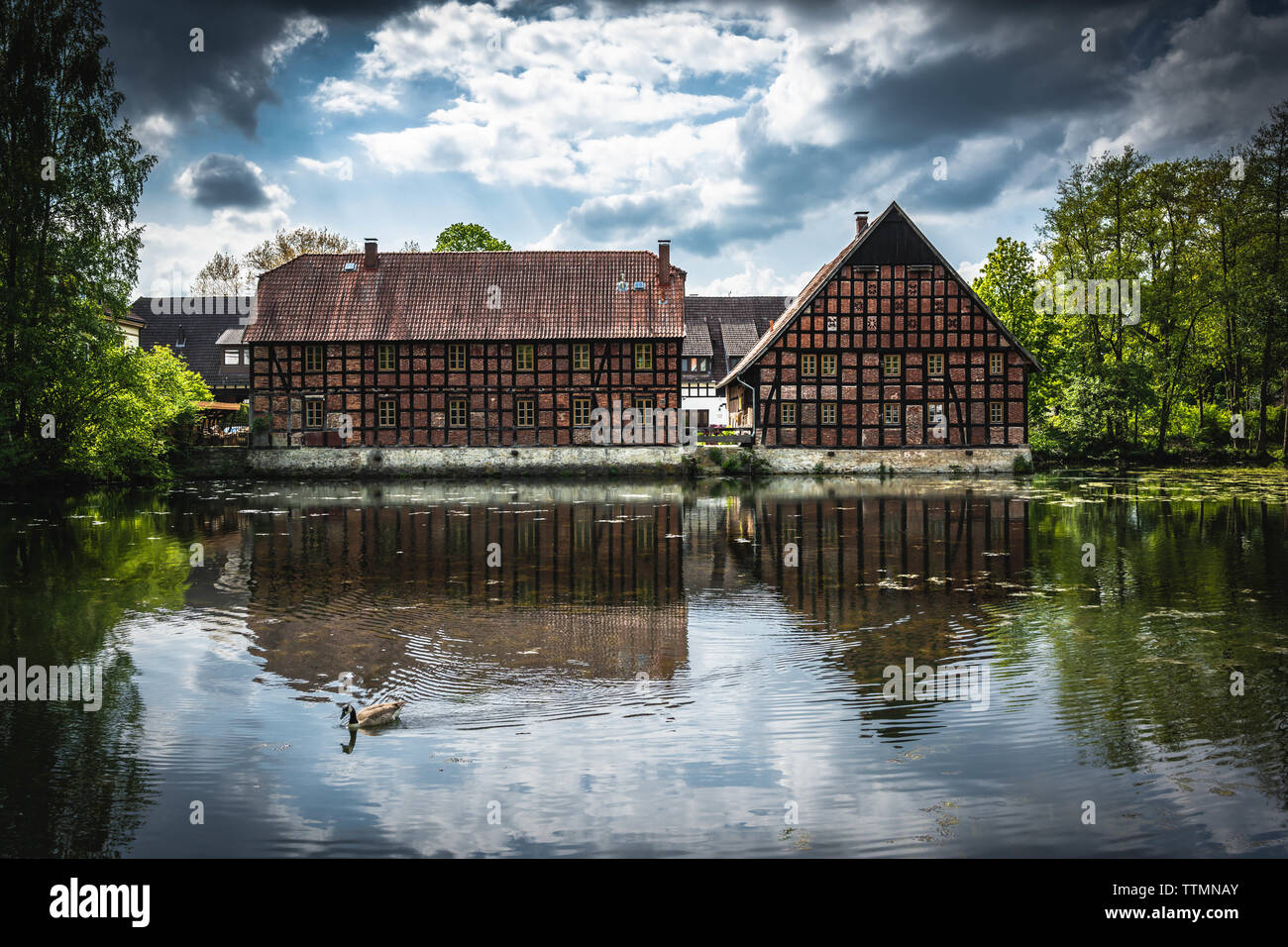 Landschaft - Stock Image