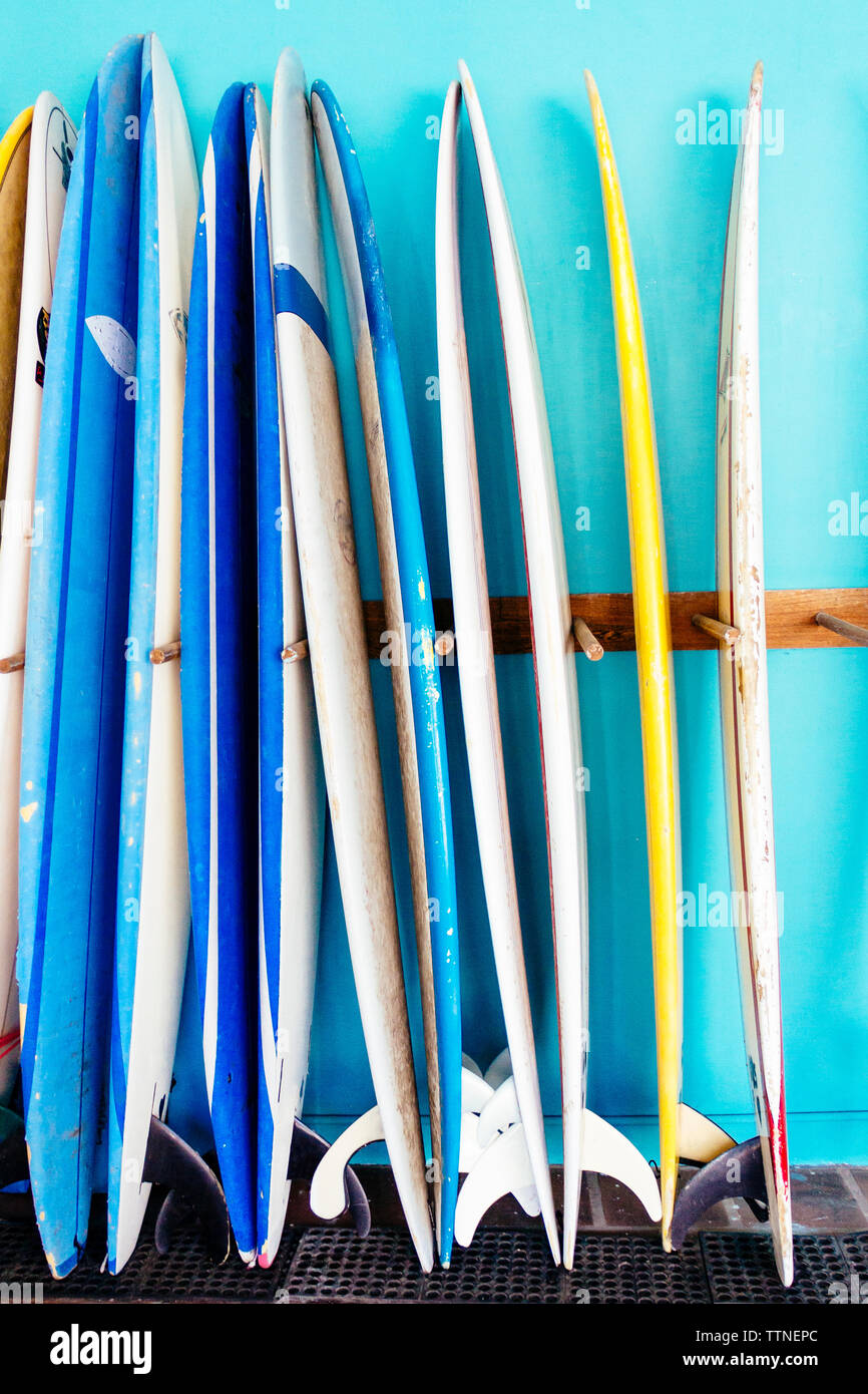 Rack of surfboards in shop Stock Photo