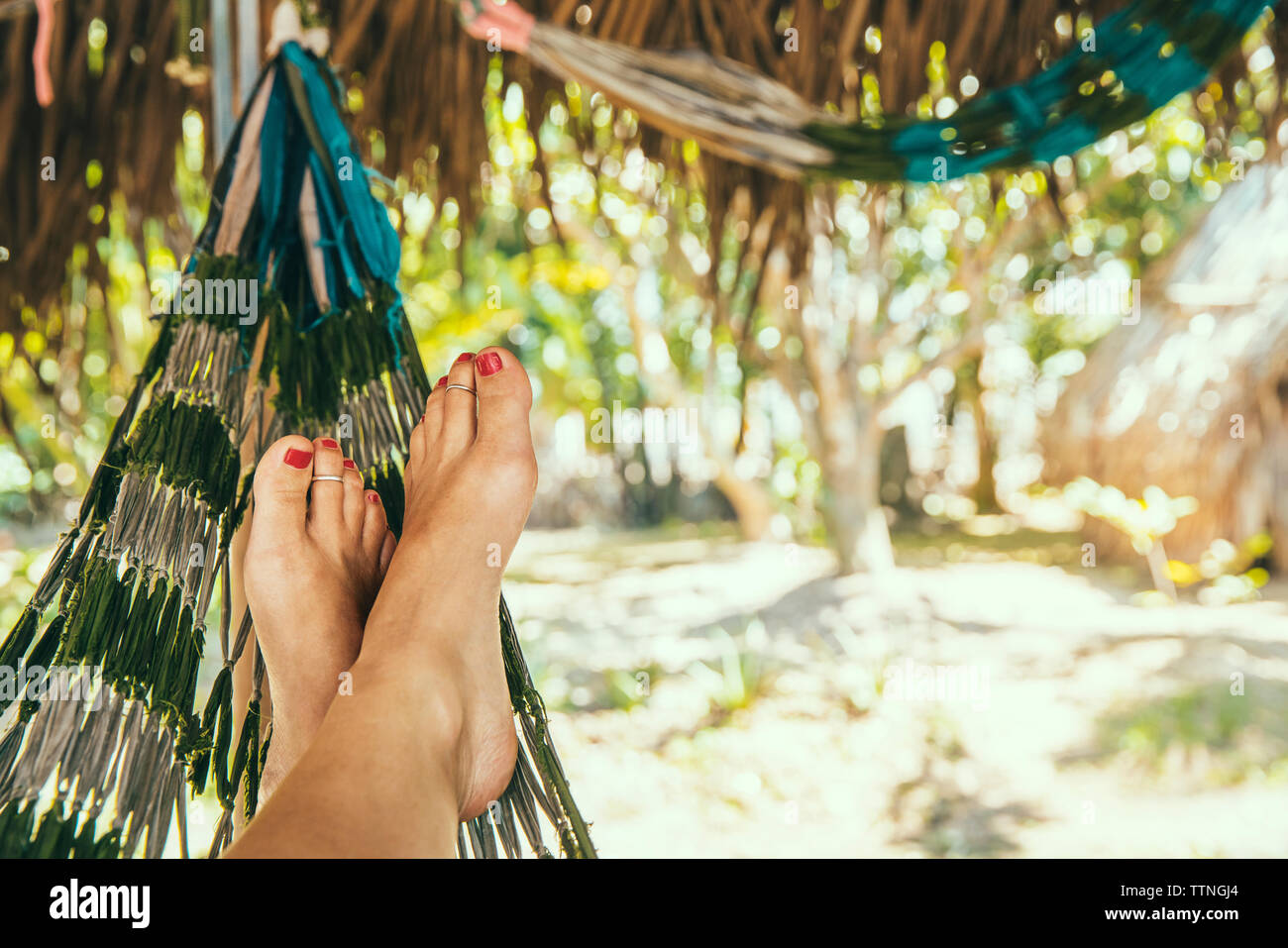 Low section of woman relaxing on hammock during summer - Stock Image