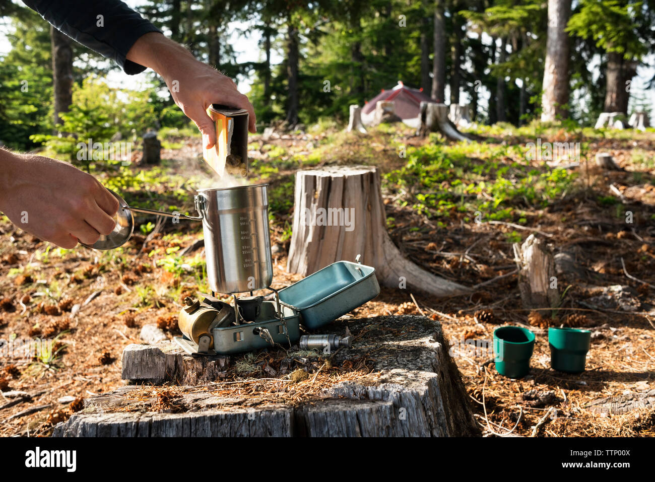 Cropped image of man pouring food in container over camping stove in forest - Stock Image