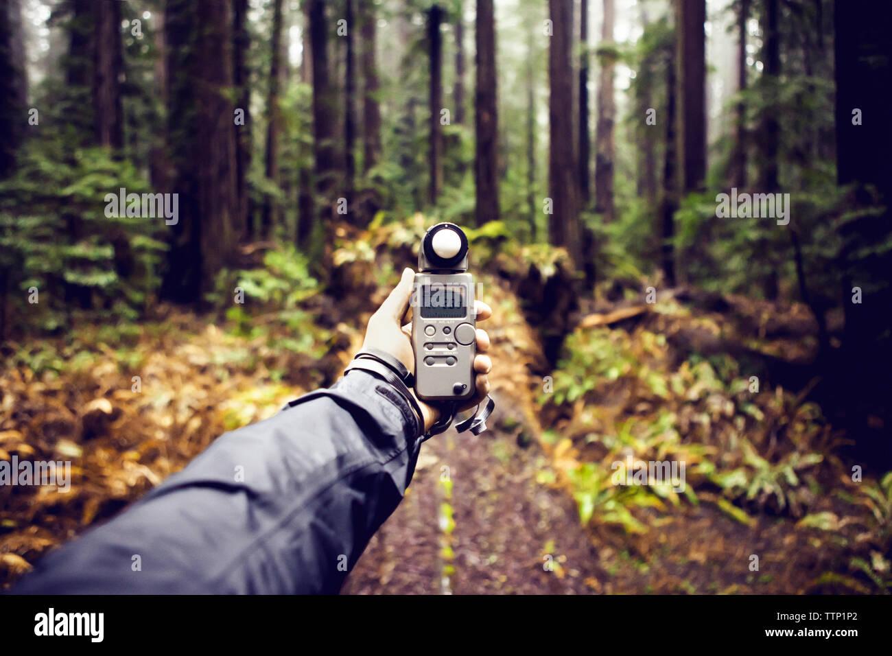Cropped image of hiker holding navigation equipment at Humboldt Redwoods State Park - Stock Image