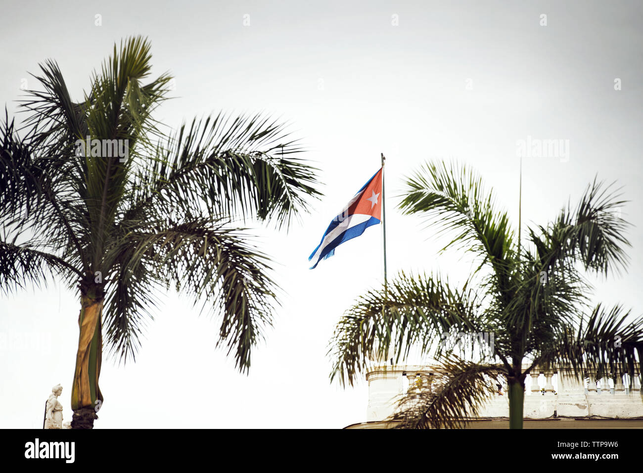 Cuban flag by palm trees against sky - Stock Image