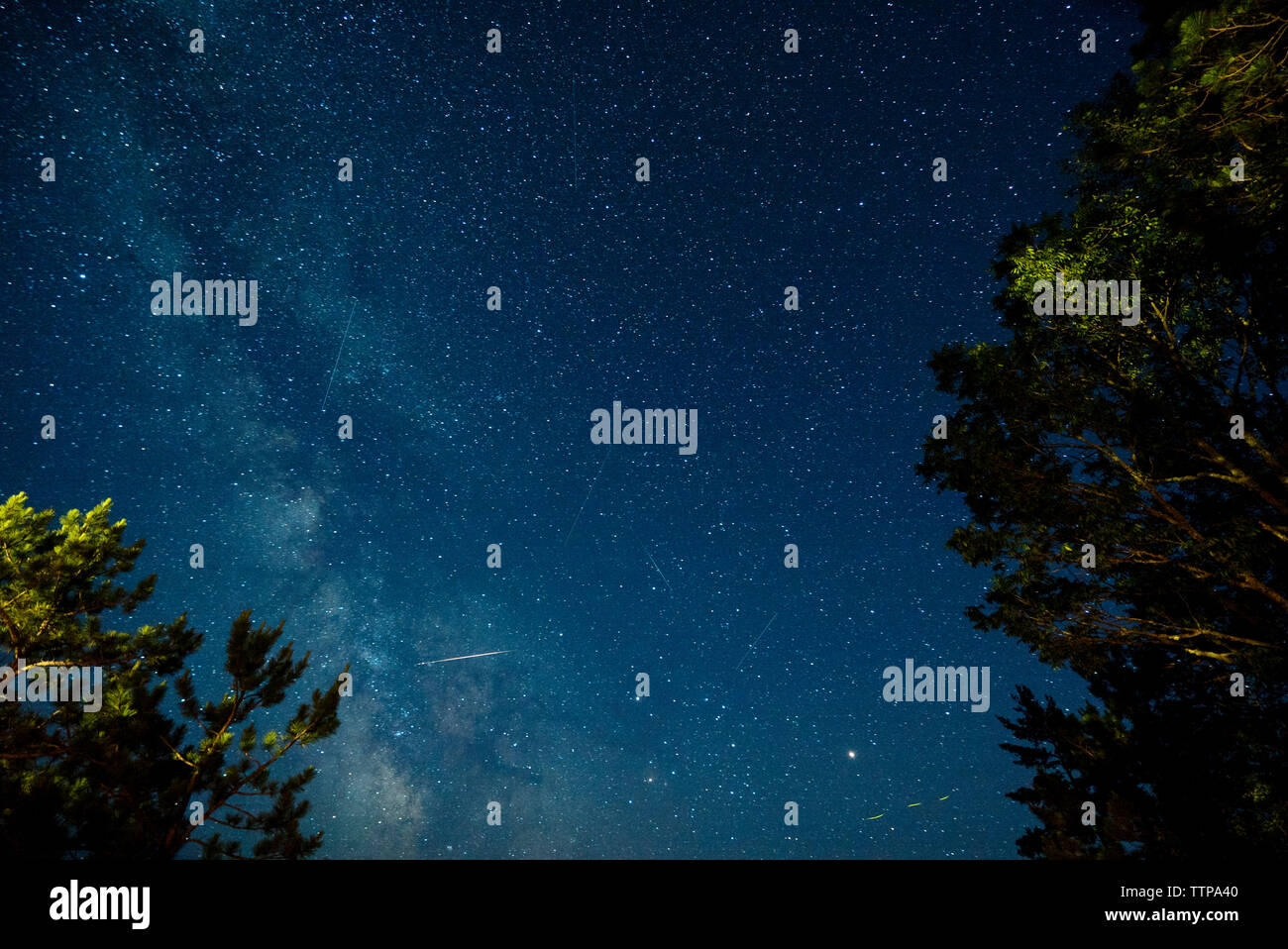 Low angle view of star field Stock Photo