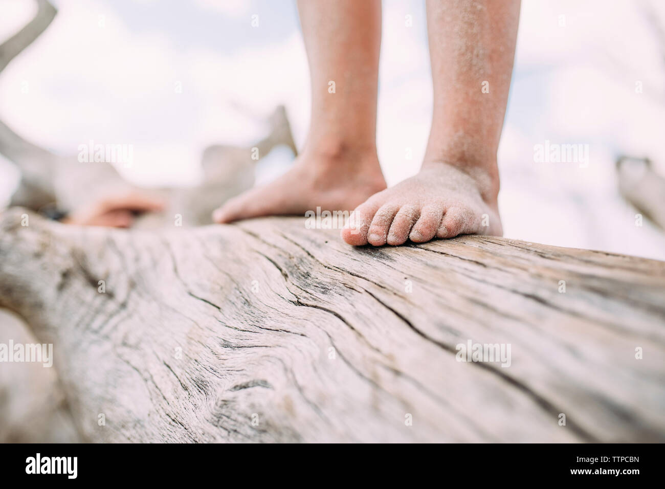 Low section of girl standing on log at beach - Stock Image