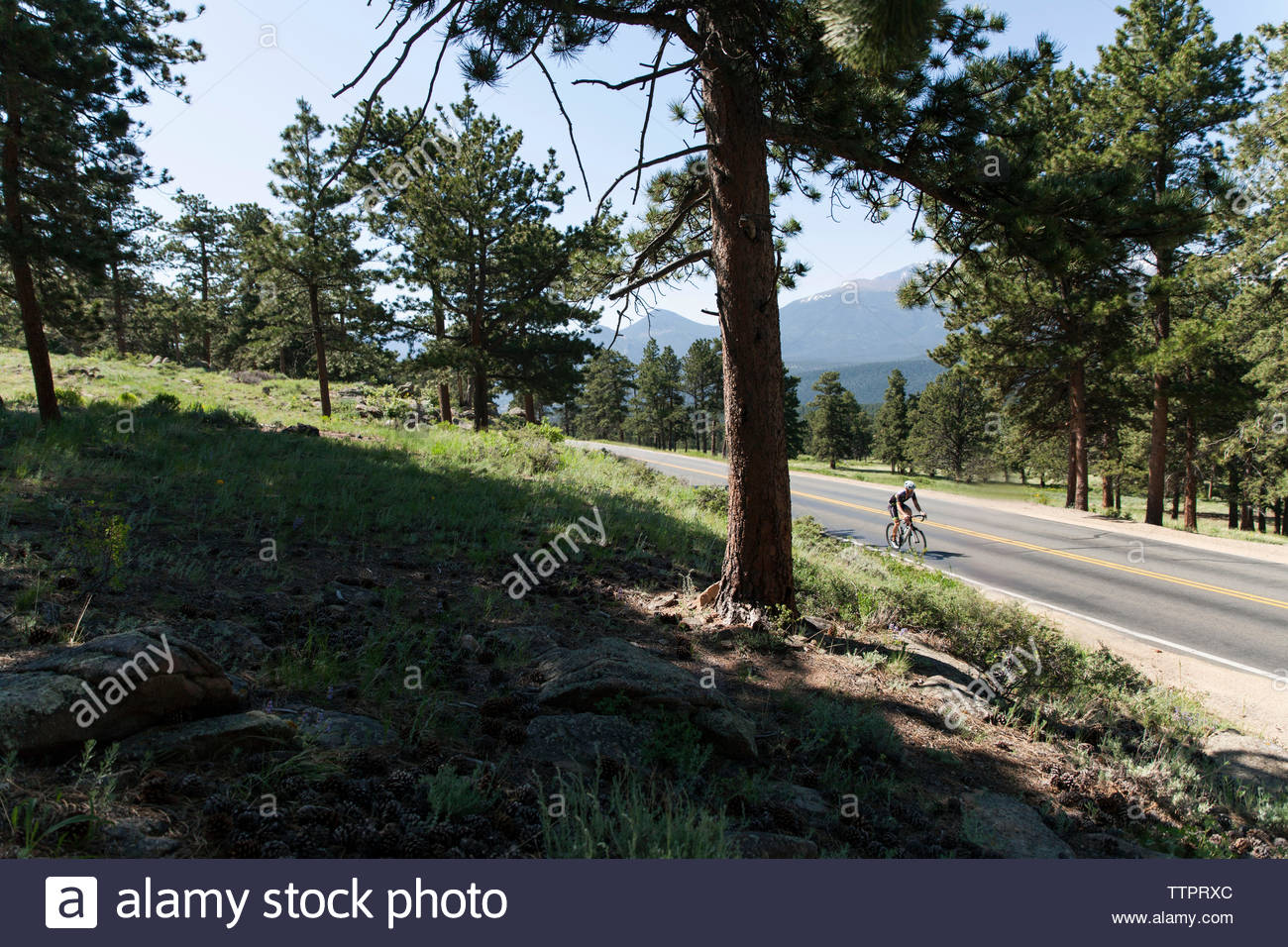 High angle view of man cycling on country road at Estes Park during sunny day - Stock Image