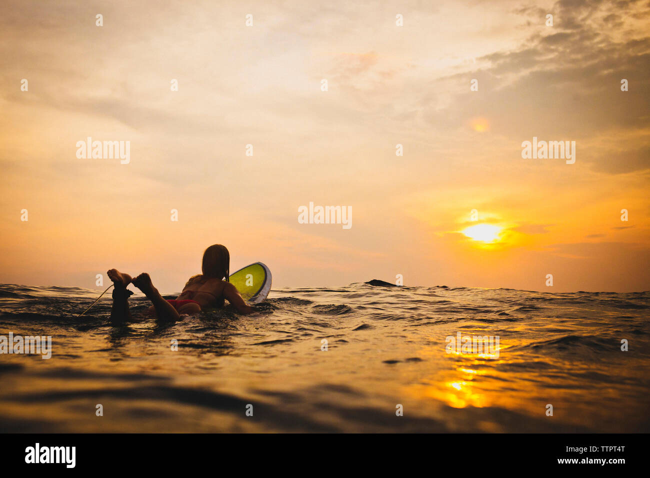 Woman lying on surfboard in sea during sunset - Stock Image