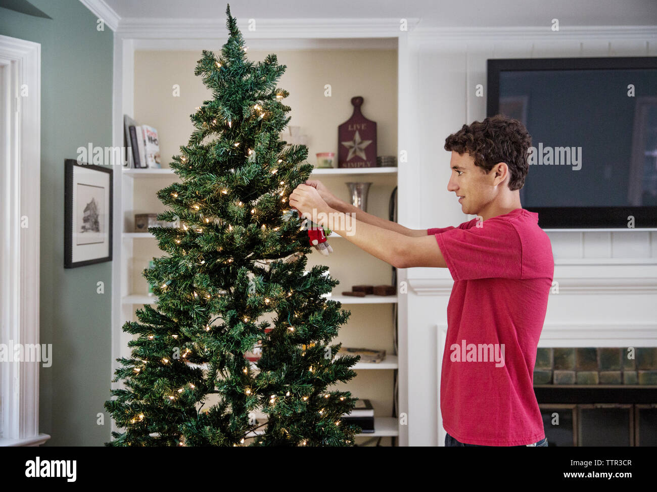 Side view of man decorating Christmas tree at home - Stock Image