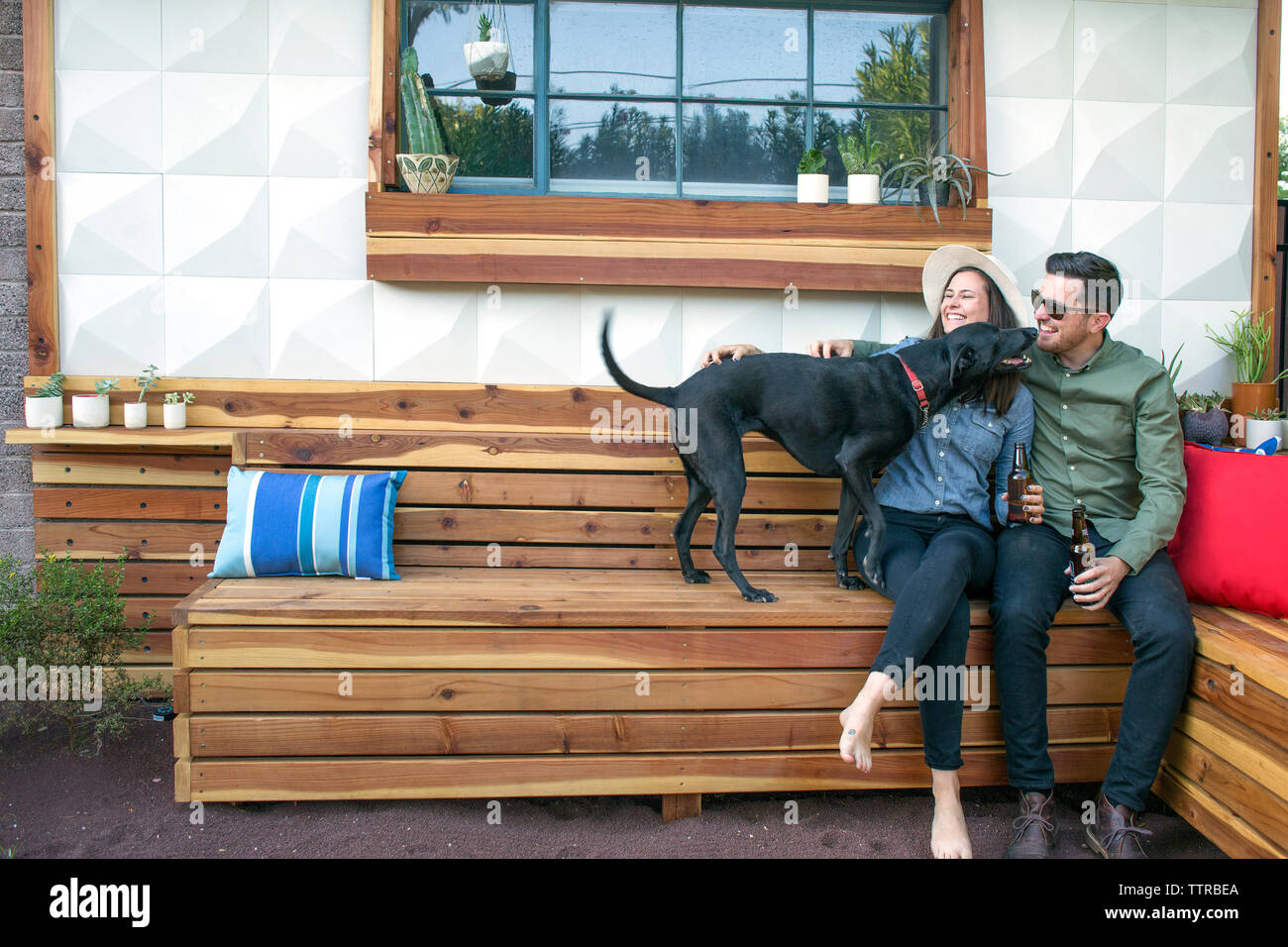 Happy couple holding beer bottles playing with dog while sitting in backyard - Stock Image
