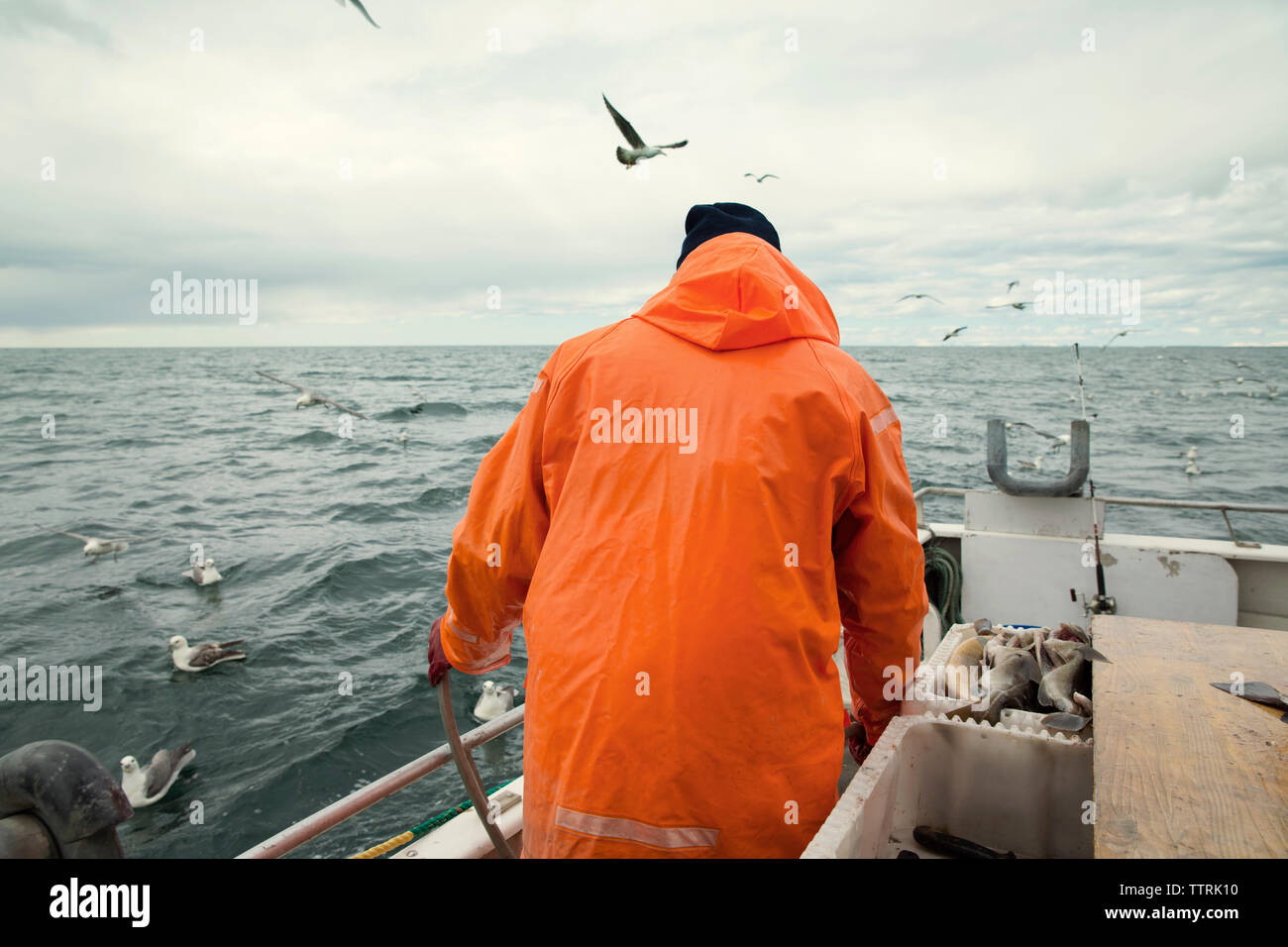 Rear view of fisherman standing on fishing boat at sea against cloudy sky Stock Photo