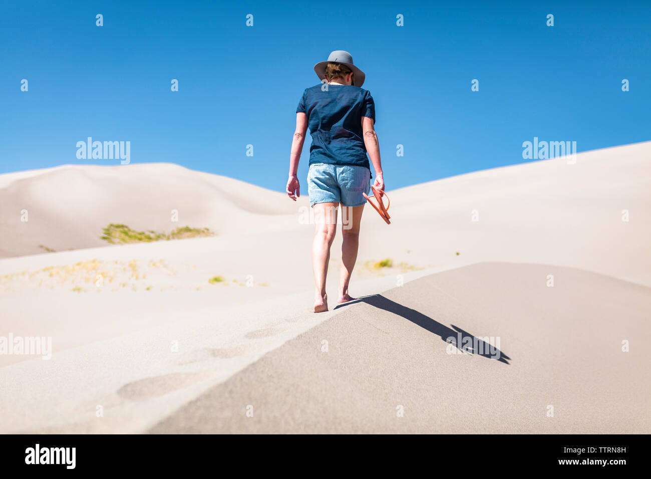 Rear view of woman holding flip-flop while walking on sand at Great Sand Dunes National Park during sunny day - Stock Image