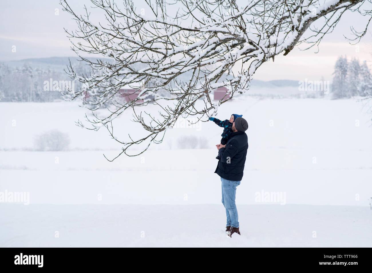 Father son winter wonderland touching snow Stock Photo