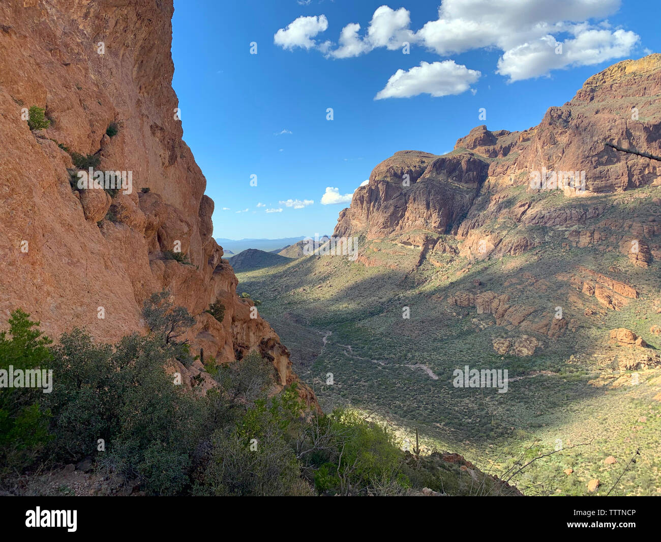 A beautiful view from the trail at Estes Canyon, Organ Pipe Cactus National Monument in southwest Arizona in the spring. - Stock Image
