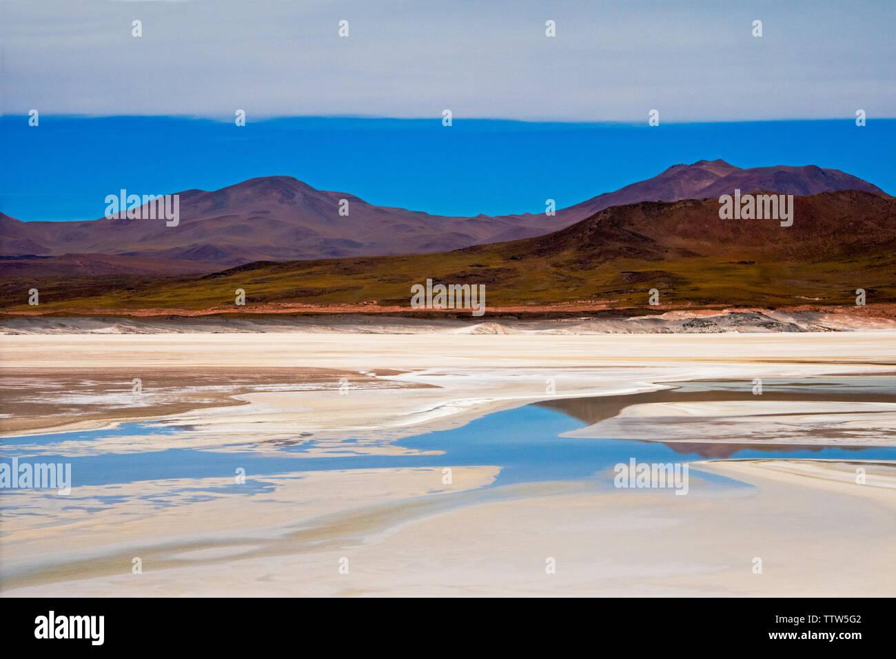 Laguna Salar de Talar, San Pedro de Atacama, Antofagasta Region, Chile Stock Photo