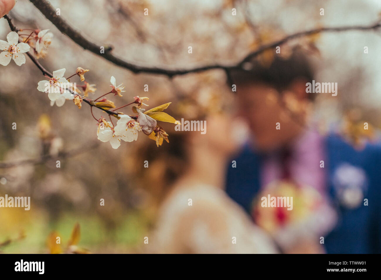 Bride and Groom wedding day - Stock Image