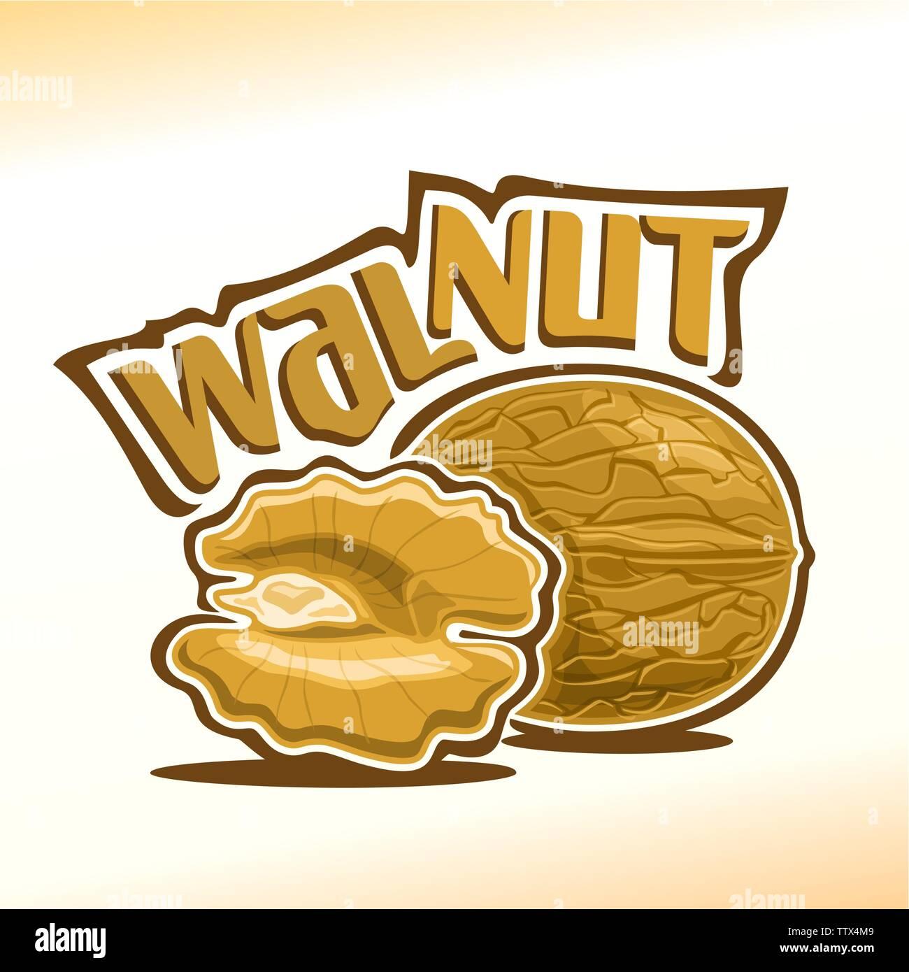 Vector logo for walnut - Stock Vector