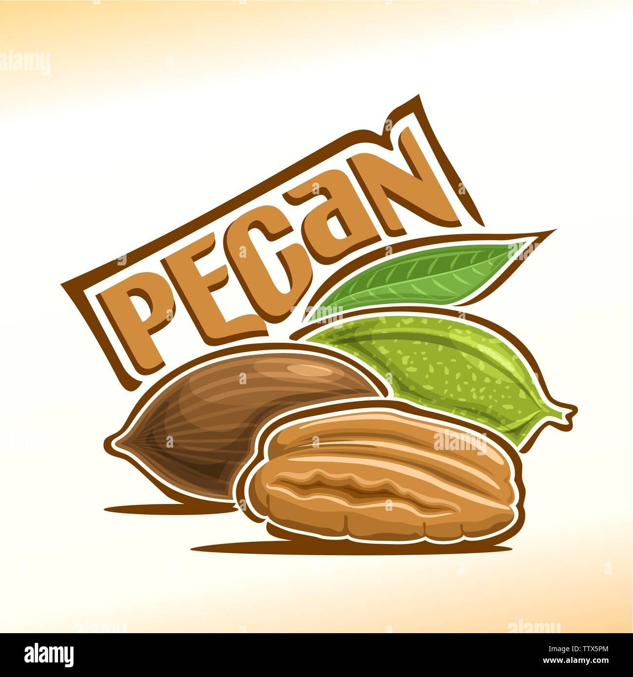 Vector logo for pecan - Stock Vector