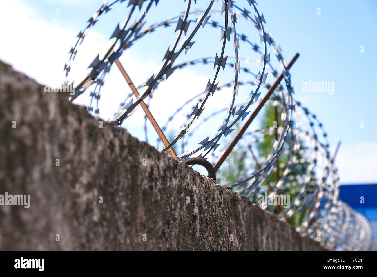 barbed wire steel wall against the immigations in europe - Stock Image