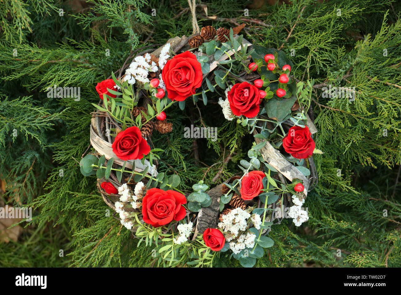 Floral wreath with beautiful flowers on thuja branches background Stock Photo
