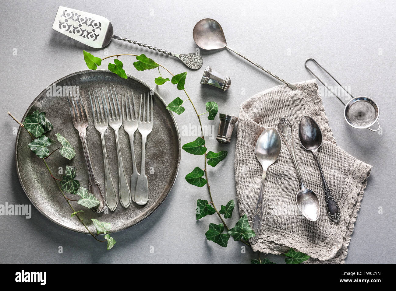 Cutlery set with plate and ivy, on gray background - Stock Image