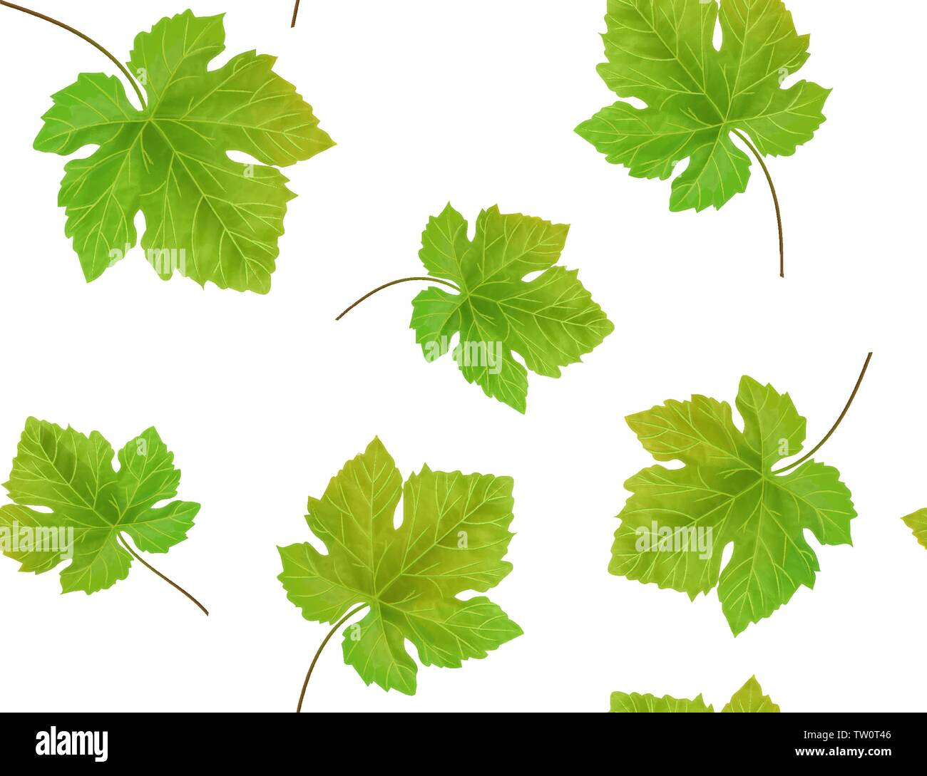 Seamless Background With Grape Leaves Vector Illustration Stock Vector Image Art Alamy
