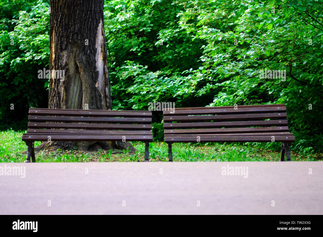 Pleasing Two Wooden Benches Stock Photos Two Wooden Benches Stock Spiritservingveterans Wood Chair Design Ideas Spiritservingveteransorg