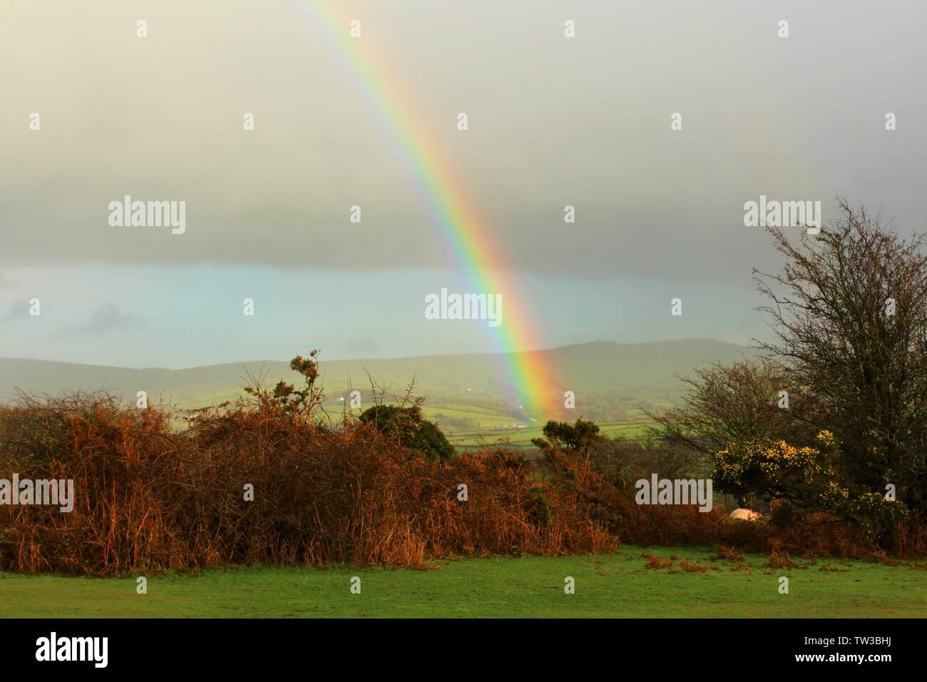 A rainbow on a dark and showery, December day, over Dartmoor National Park in Devon, England. Stock Photo