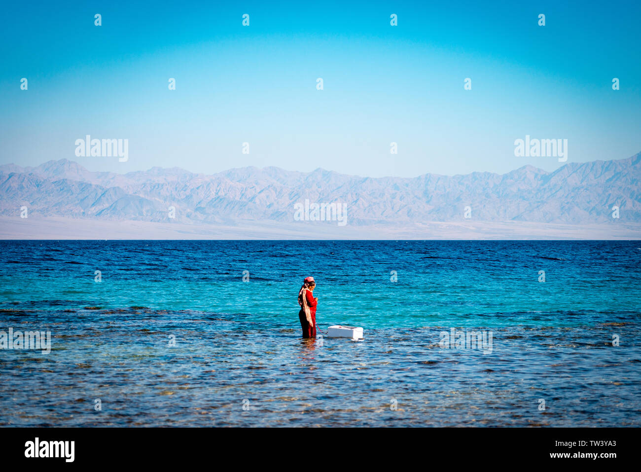 A Bedouin woman fishes in the shallows of the Red Sea in Sinai, Egypt, with Saudi Arabia in the background - Stock Image