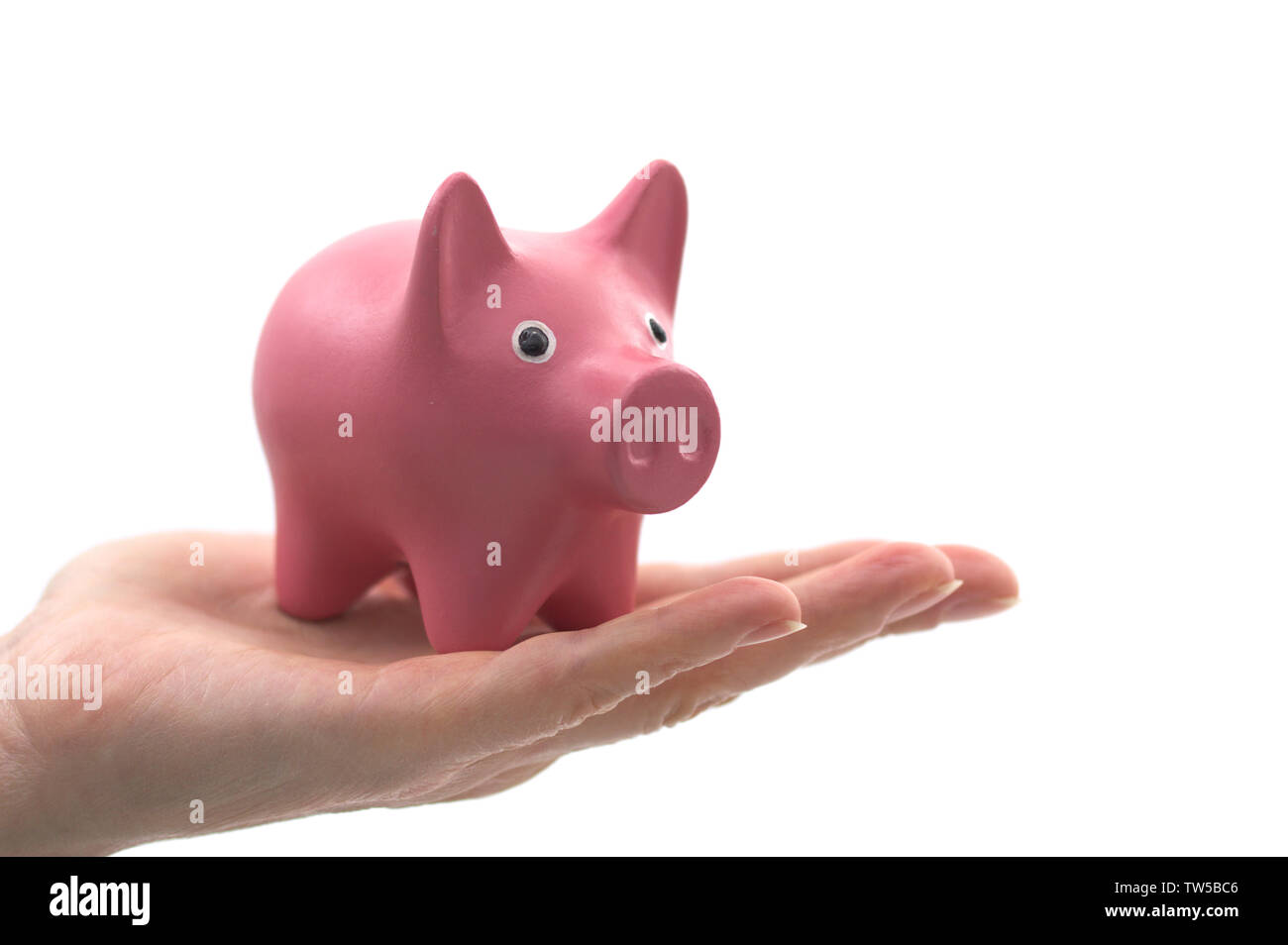 Savings concept: a pig-shaped piggy bank in the hand of a person with blank background - Stock Image