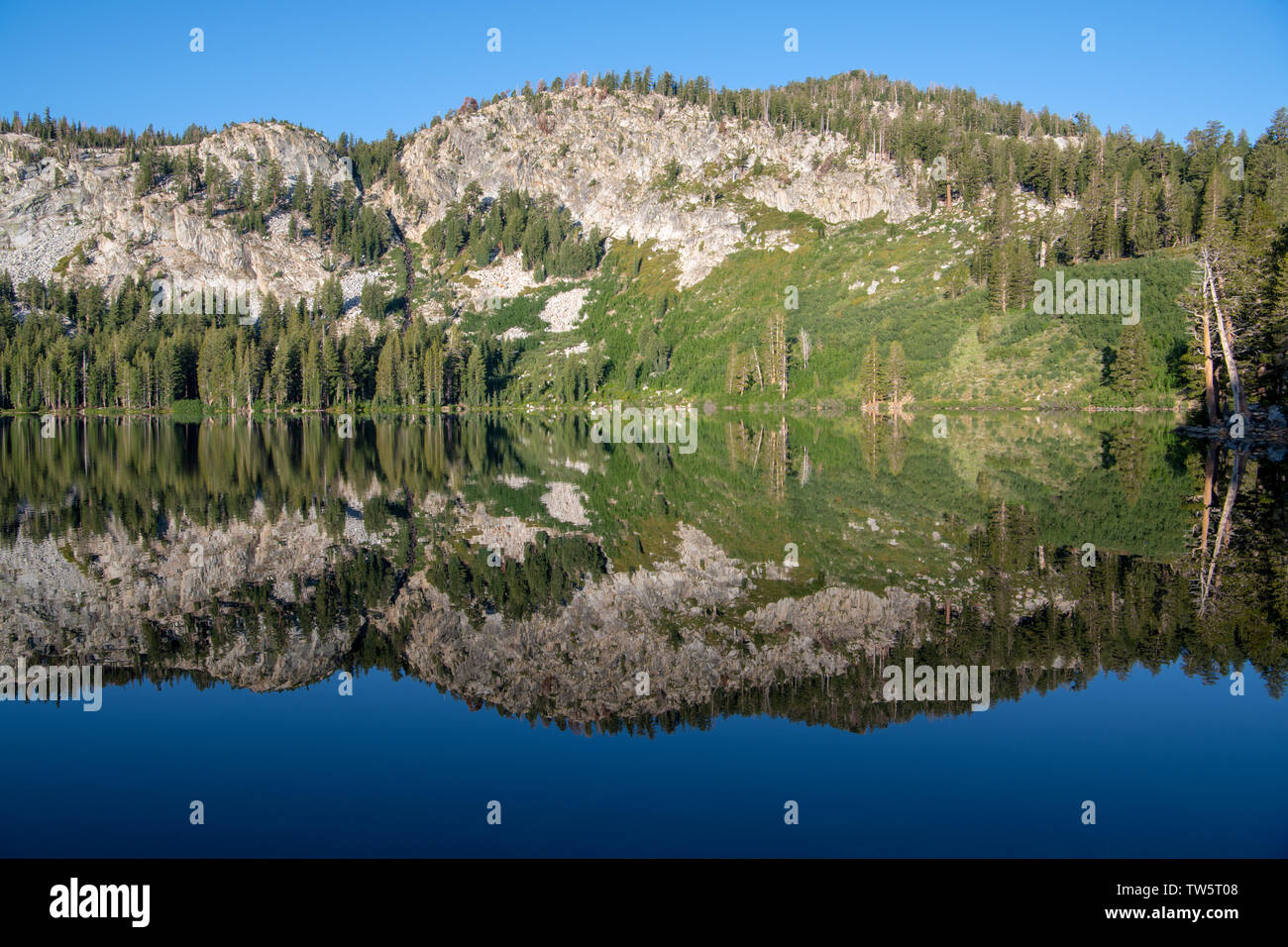Tranquil, perfectly still alpine lake reflecting pine trees, mountains, and blue sky - Lake George in California's Sierra Nevada Mountains Stock Photo