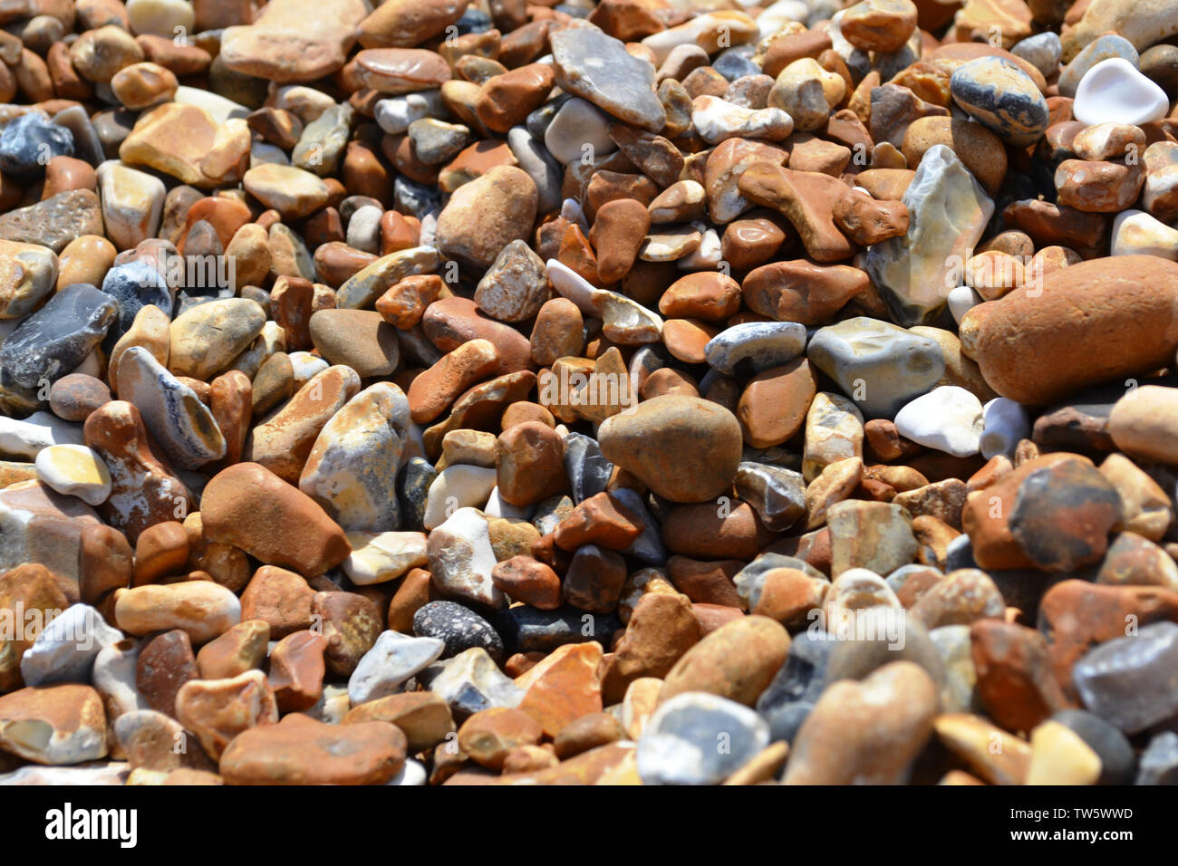 Pebble beach of big oval colorful stones brightly illuminated. Stock Photo